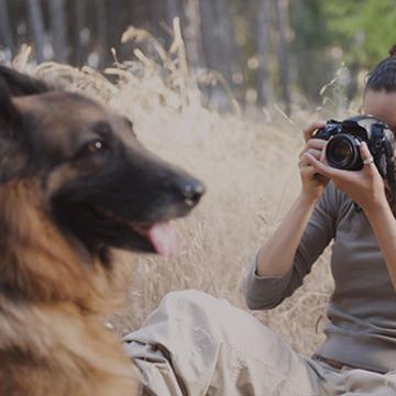 Photographie de Nature & Animalière