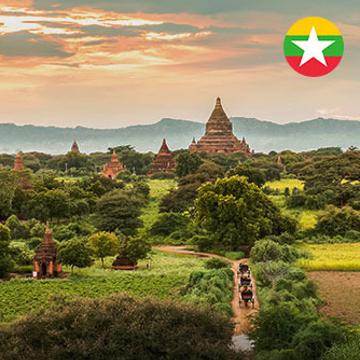 Birman - Express