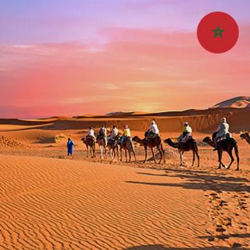 Arabe marocain -Express