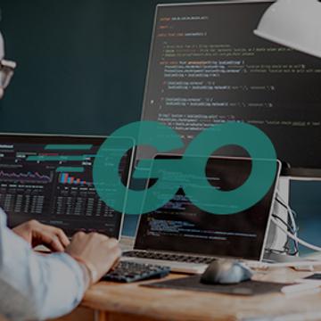 Langage Go : le Web